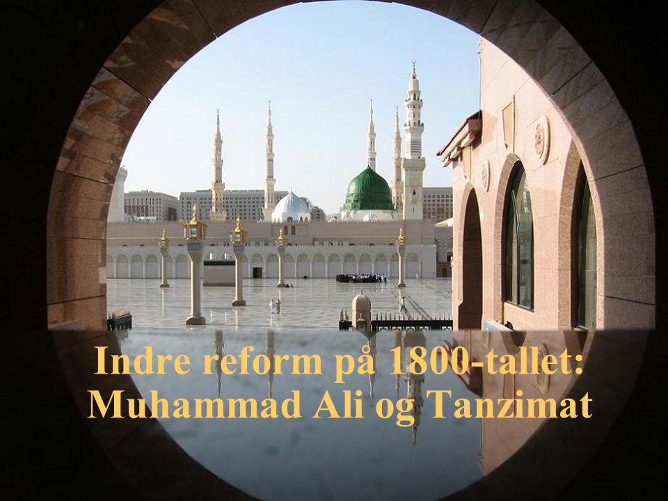 Indre reform på 1800-tallet: Muhammad Ali og Tanzimat