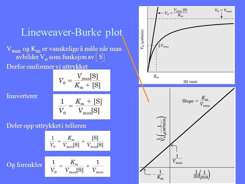 Lineweaver-Burke plot