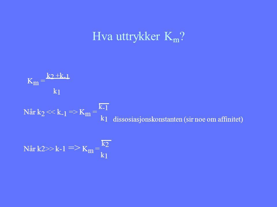 Hva uttrykker Km k1 Km = k2 +k-1 Når k2 << k-1 => Km = k-1