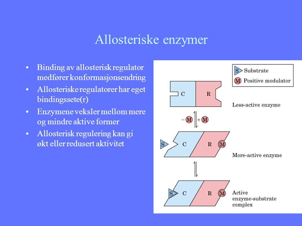 Allosteriske enzymer Binding av allosterisk regulator medfører konformasjonsendring. Allosteriske regulatorer har eget bindingssete(r)