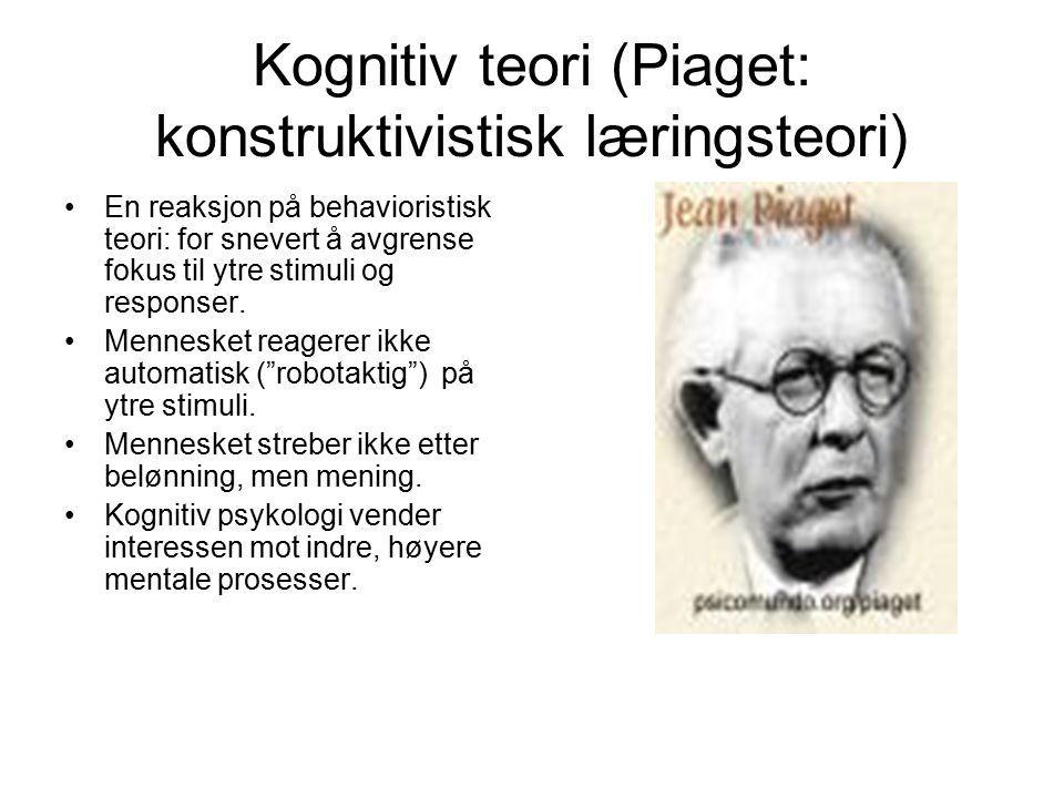 Kognitiv teori (Piaget: konstruktivistisk læringsteori)