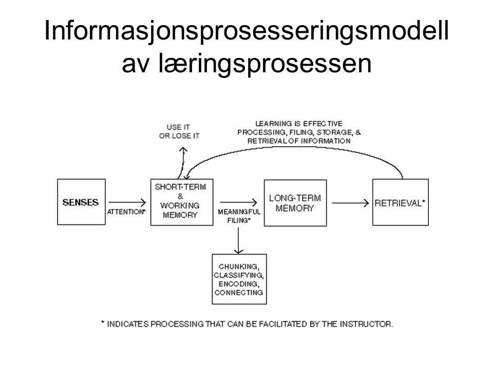 Informasjonsprosesseringsmodell av læringsprosessen