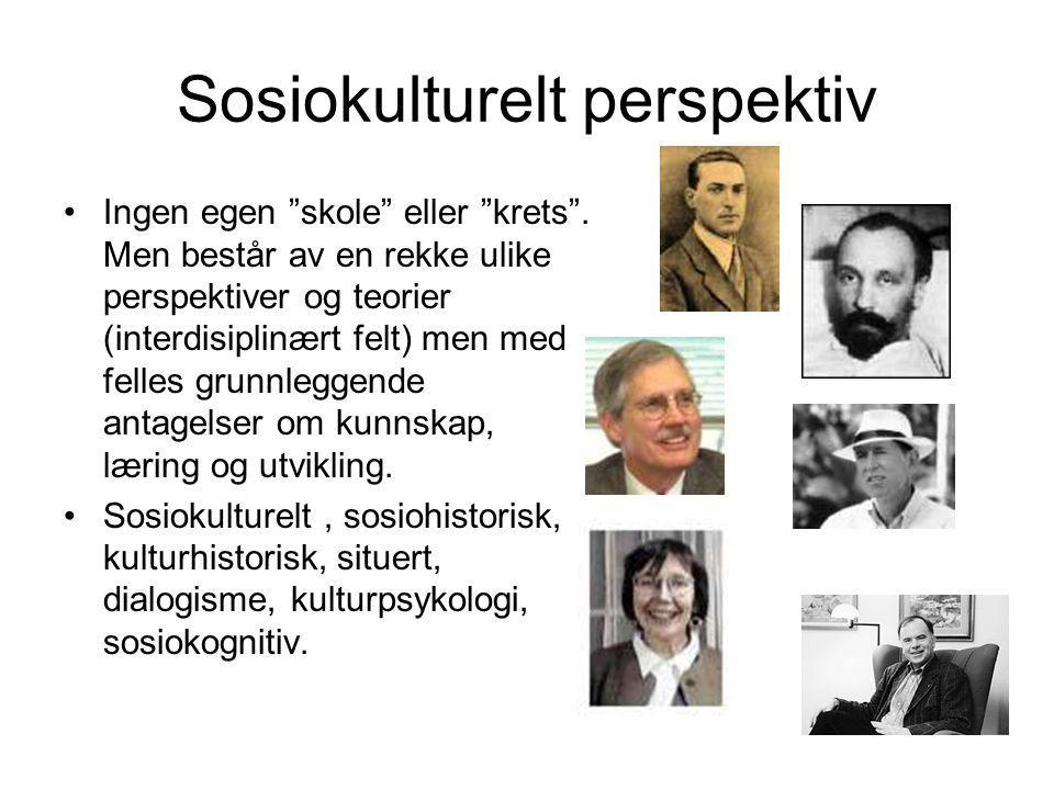 Sosiokulturelt perspektiv