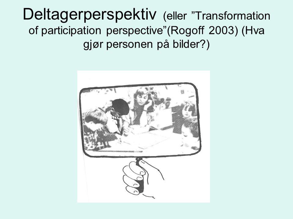 Deltagerperspektiv (eller Transformation of participation perspective (Rogoff 2003) (Hva gjør personen på bilder )