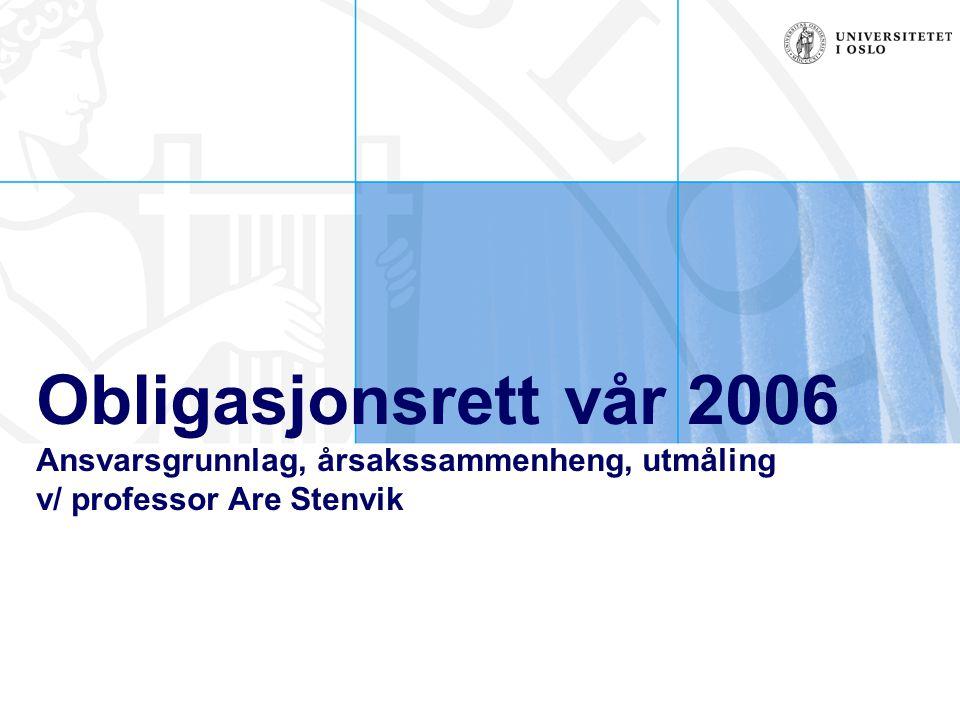 Obligasjonsrett vår 2006 Ansvarsgrunnlag, årsakssammenheng, utmåling v/ professor Are Stenvik