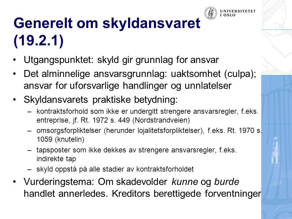 Generelt om skyldansvaret (19.2.1)