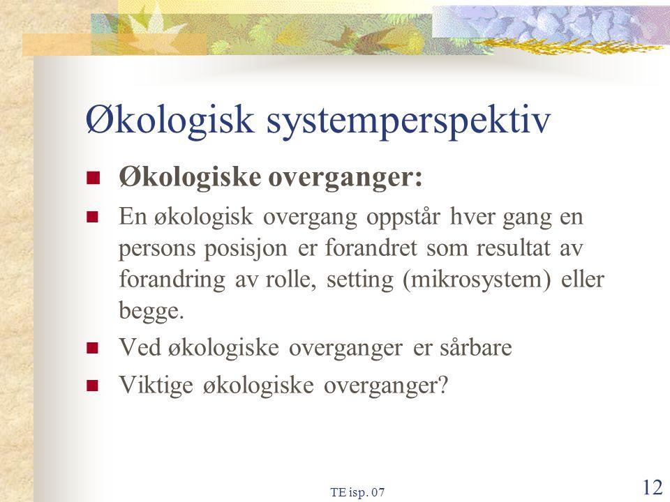 Økologisk systemperspektiv
