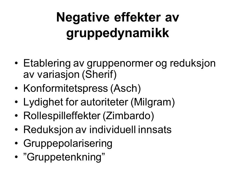 Negative effekter av gruppedynamikk