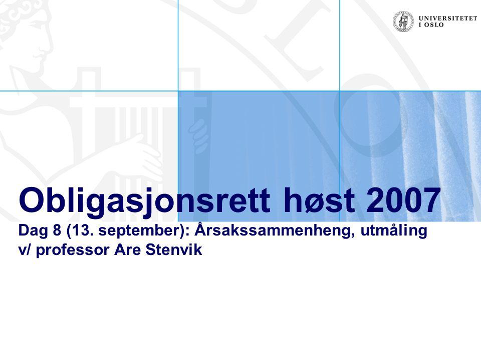 Obligasjonsrett høst 2007 Dag 8 (13