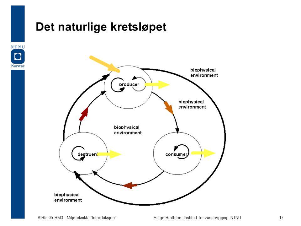 Det naturlige kretsløpet