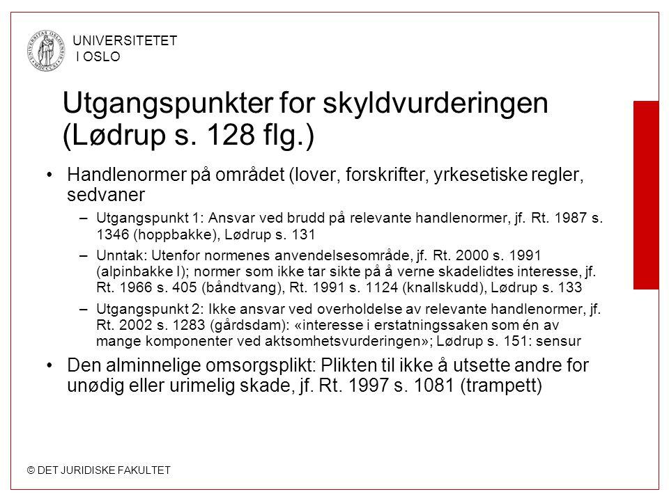 Utgangspunkter for skyldvurderingen (Lødrup s. 128 flg.)
