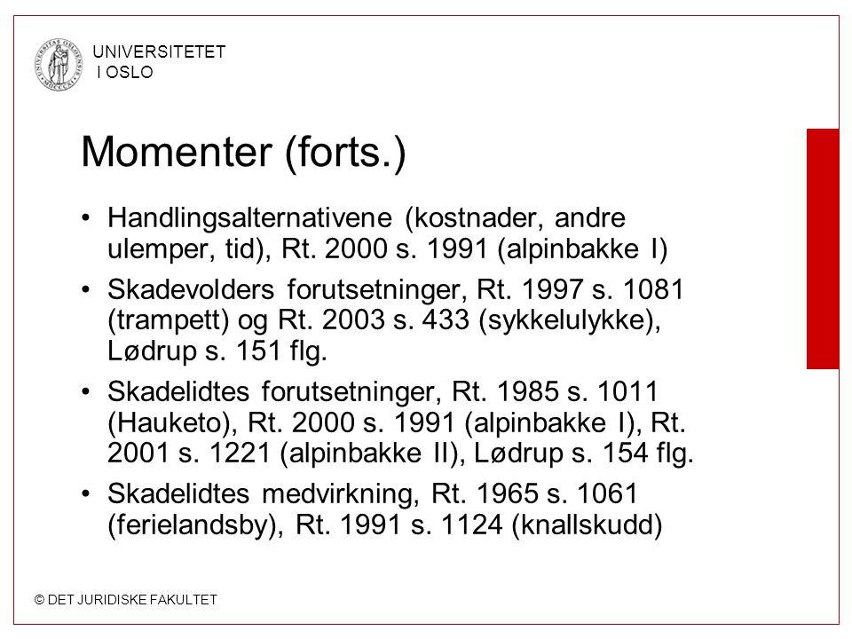 Momenter (forts.) Handlingsalternativene (kostnader, andre ulemper, tid), Rt. 2000 s. 1991 (alpinbakke I)