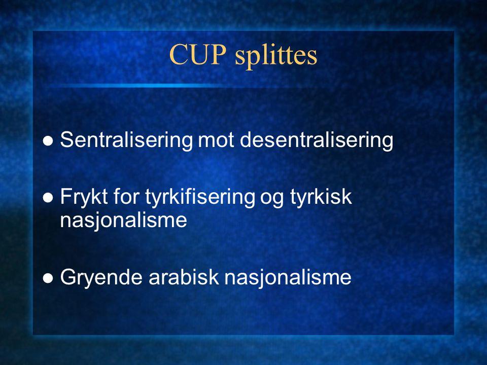 CUP splittes Sentralisering mot desentralisering