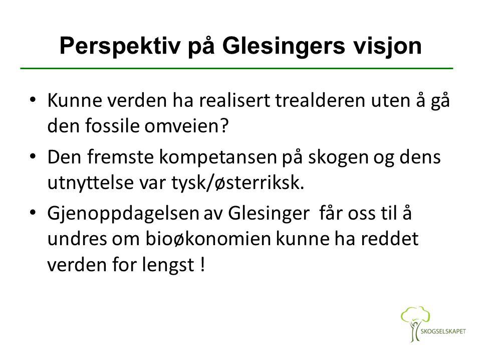 Perspektiv på Glesingers visjon