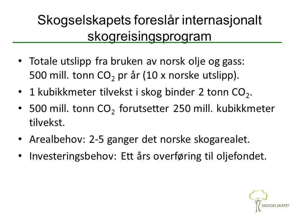 Skogselskapets foreslår internasjonalt skogreisingsprogram