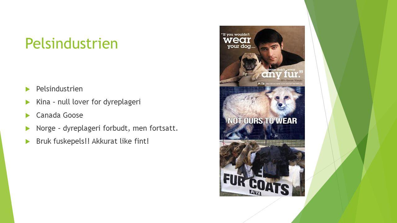 Pelsindustrien Pelsindustrien Kina – null lover for dyreplageri