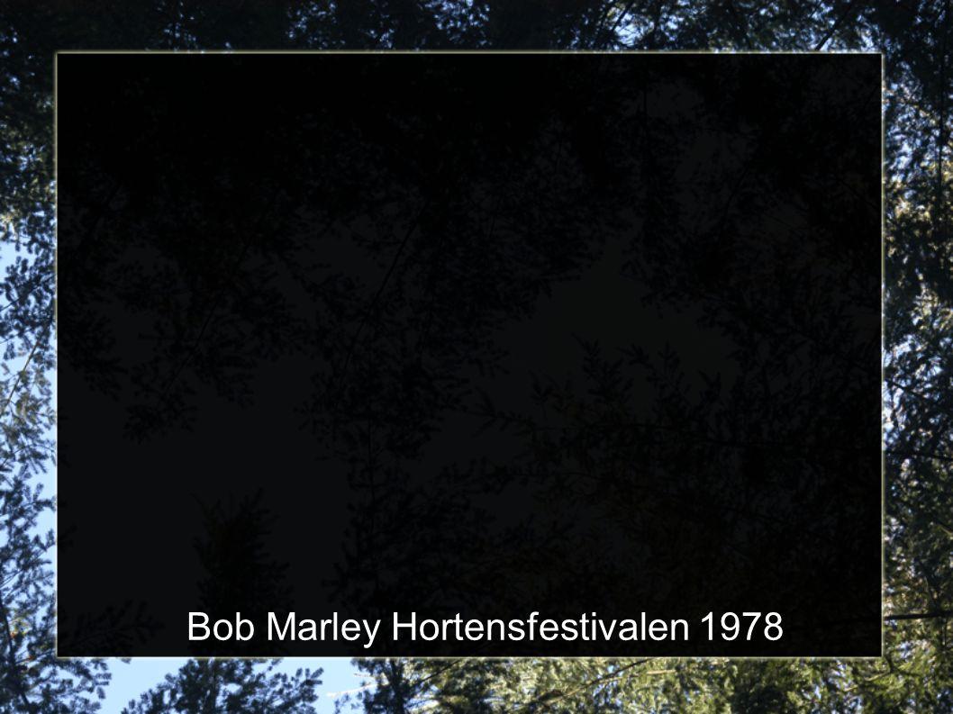 Bob Marley Hortensfestivalen 1978
