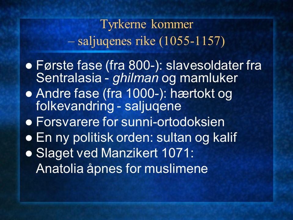 Tyrkerne kommer – saljuqenes rike (1055-1157)