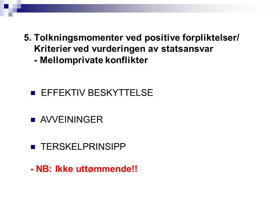 5. Tolkningsmomenter ved positive forpliktelser/