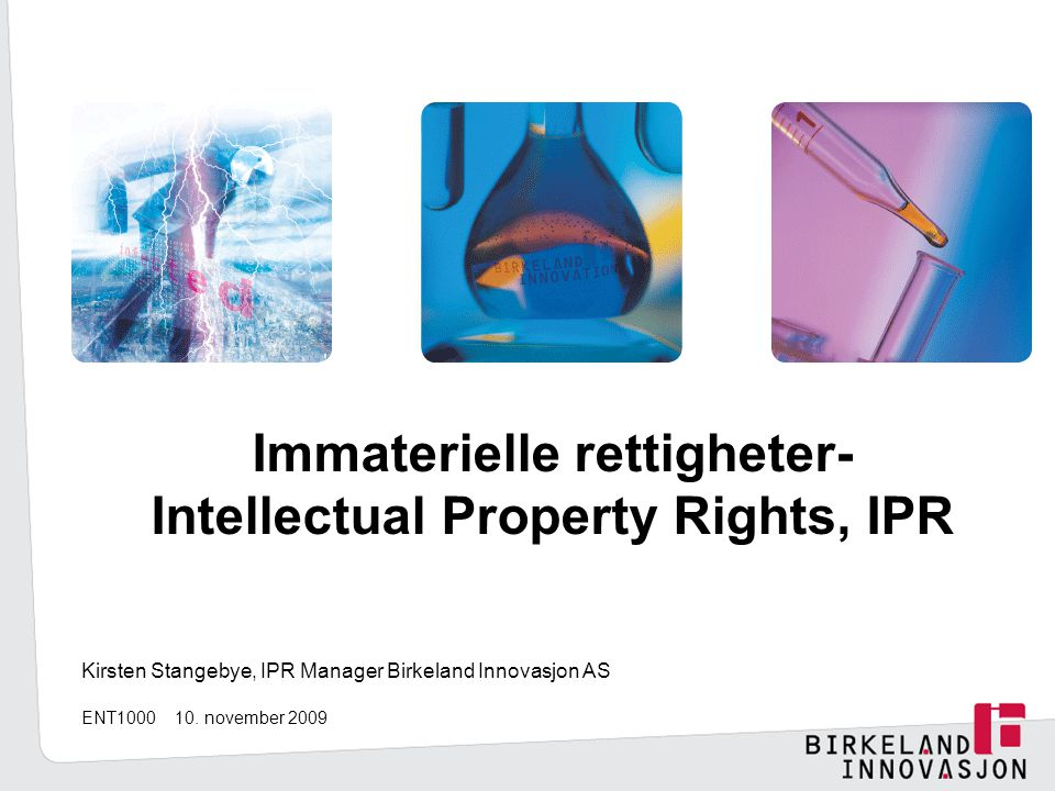 Immaterielle rettigheter- Intellectual Property Rights, IPR