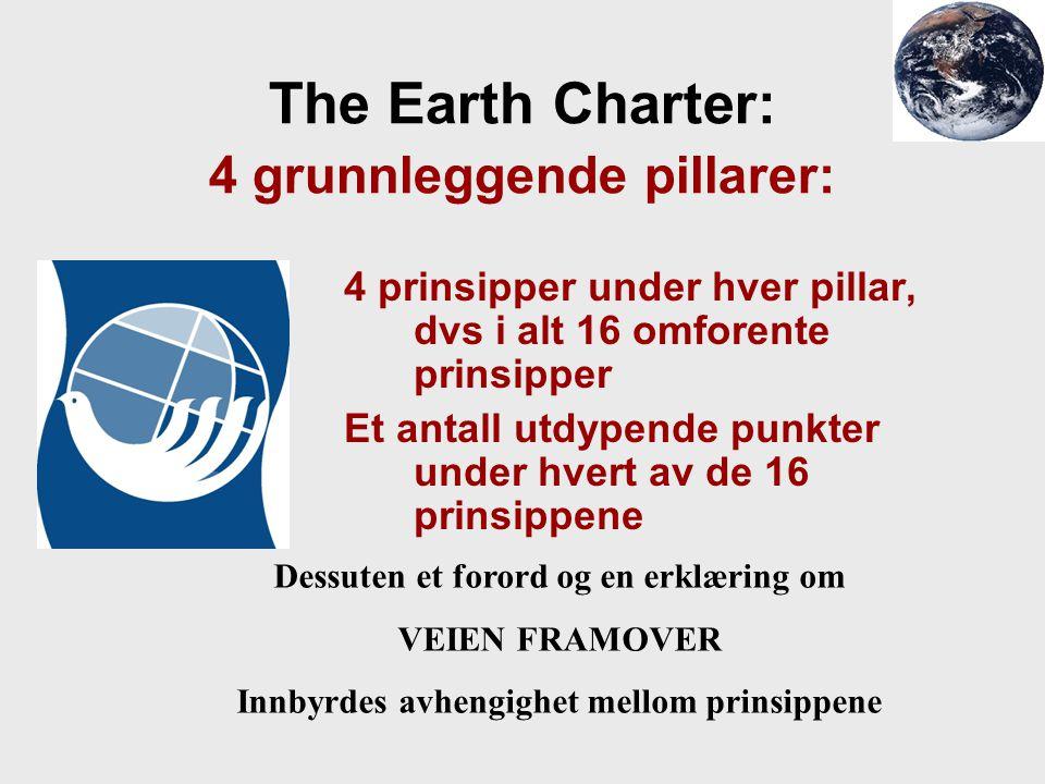 The Earth Charter: 4 grunnleggende pillarer: