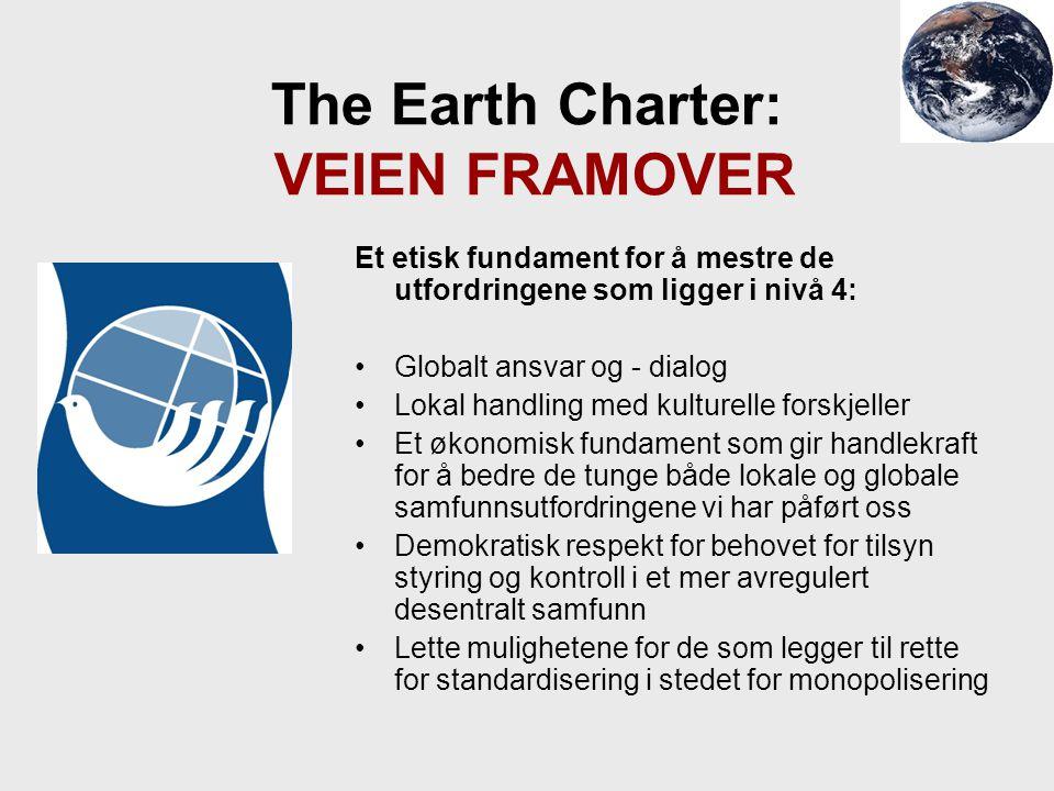 The Earth Charter: VEIEN FRAMOVER