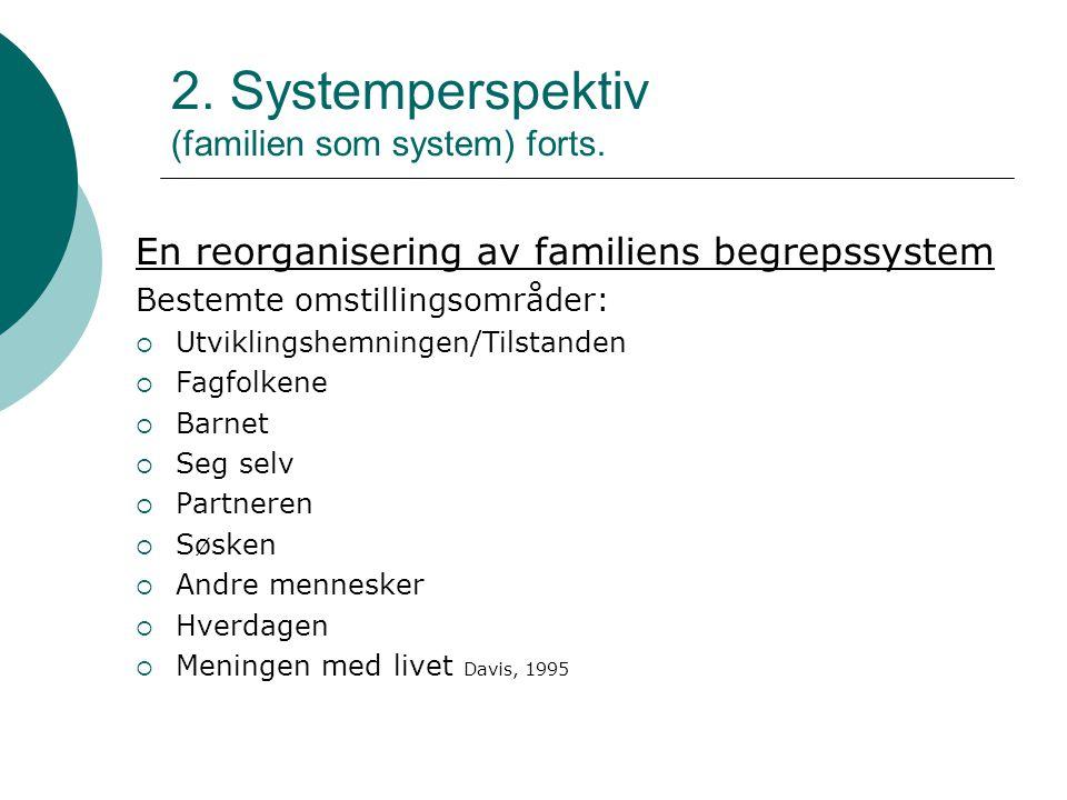 2. Systemperspektiv (familien som system) forts.