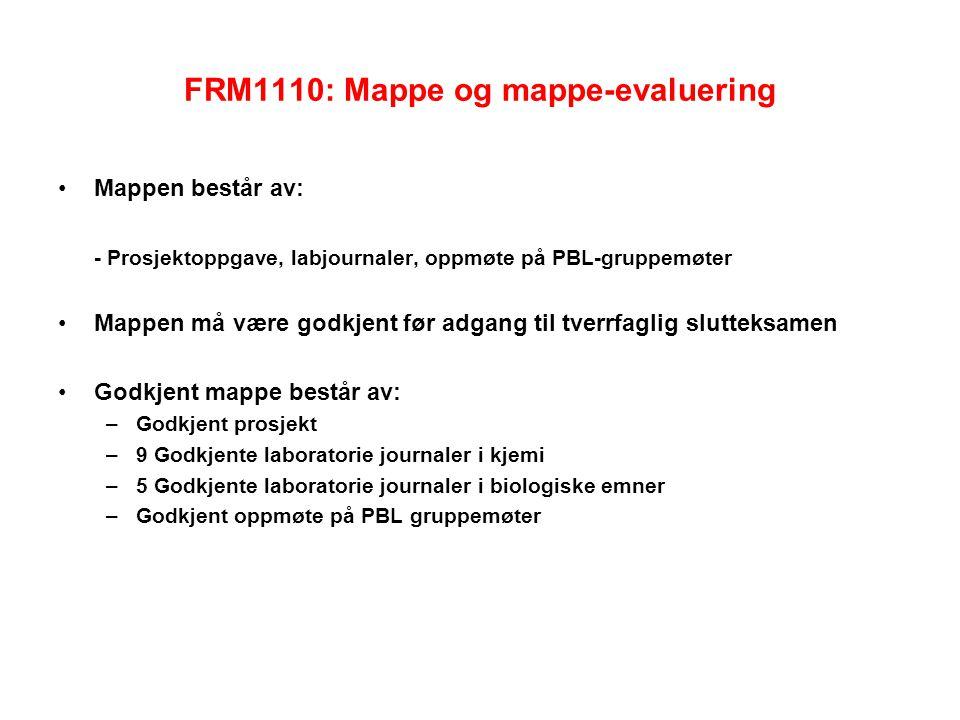 FRM1110: Mappe og mappe-evaluering