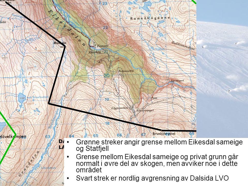 Grønne streker angir grense mellom Eikesdal sameige og Statfjell