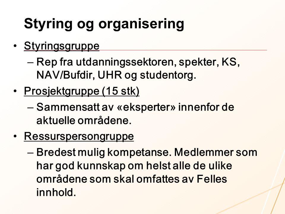 Styring og organisering