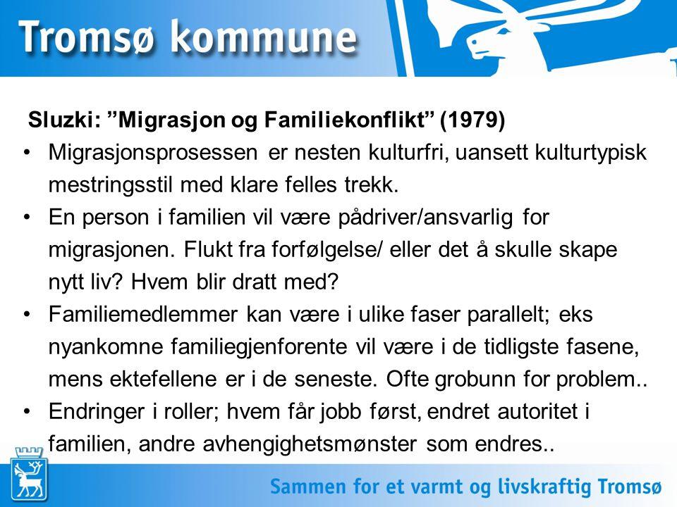 Sluzki: Migrasjon og Familiekonflikt (1979)