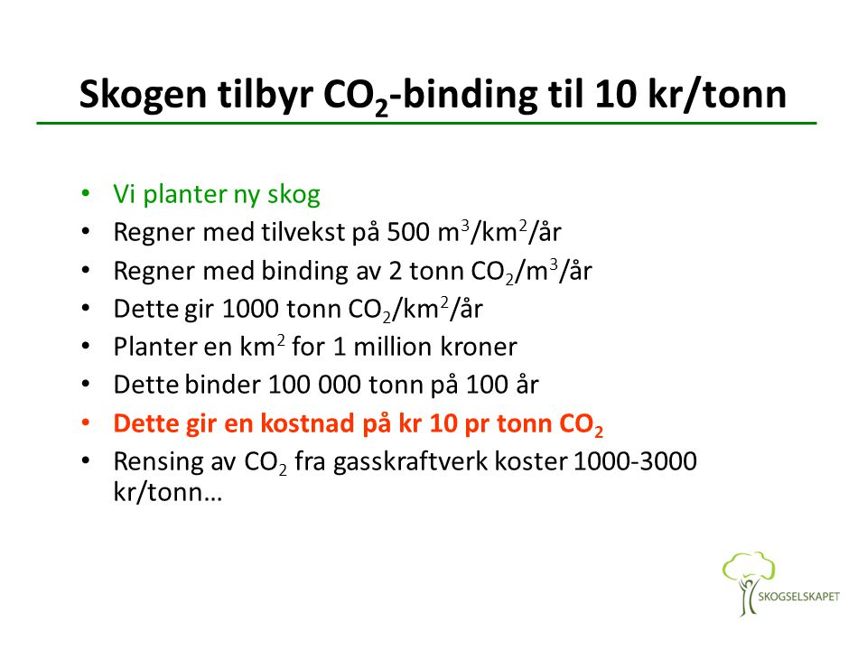 Skogen tilbyr CO2-binding til 10 kr/tonn