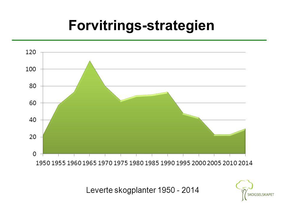 Forvitrings-strategien