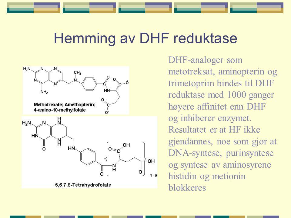 Hemming av DHF reduktase