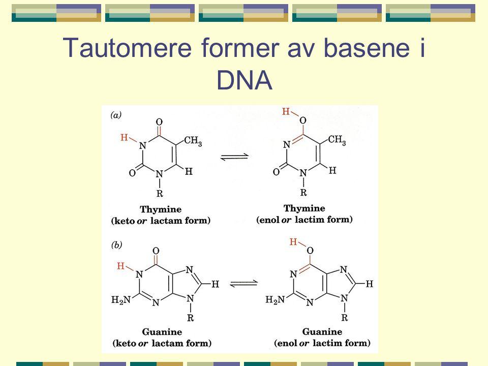 Tautomere former av basene i DNA