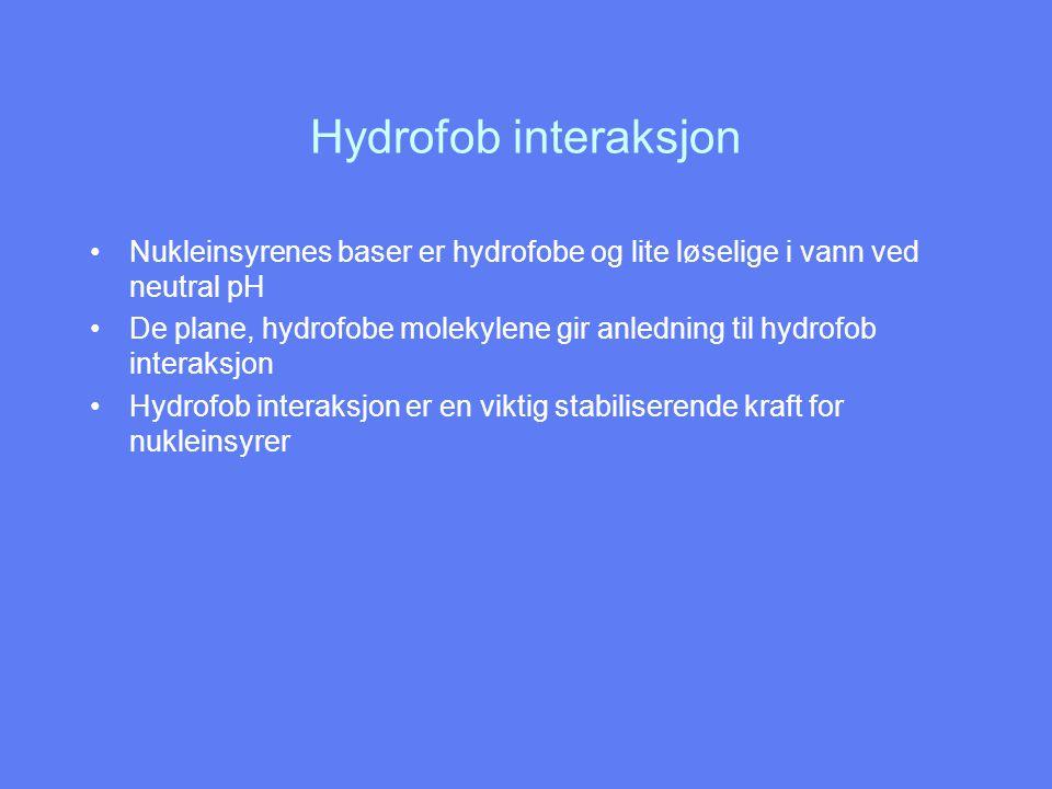 Hydrofob interaksjon Nukleinsyrenes baser er hydrofobe og lite løselige i vann ved neutral pH.