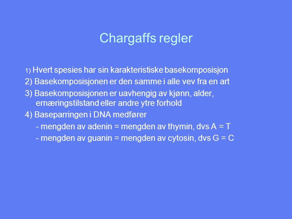 Chargaffs regler 1) Hvert spesies har sin karakteristiske basekomposisjon. 2) Basekomposisjonen er den samme i alle vev fra en art.