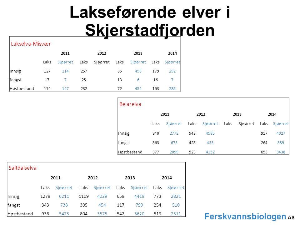 Lakseførende elver i Skjerstadfjorden