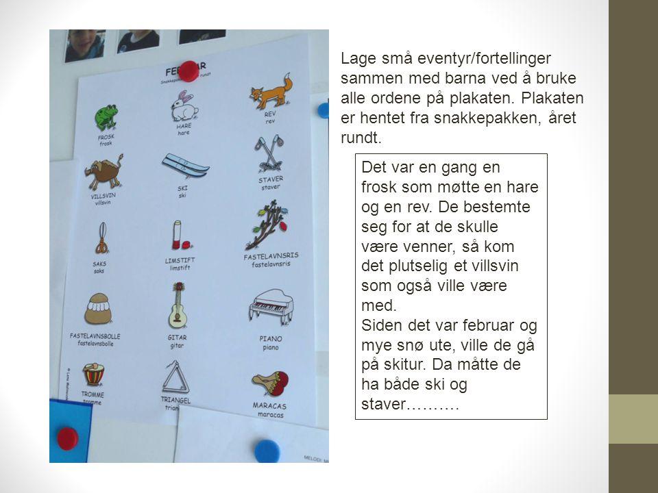 Lage små eventyr/fortellinger sammen med barna ved å bruke alle ordene på plakaten. Plakaten er hentet fra snakkepakken, året rundt.