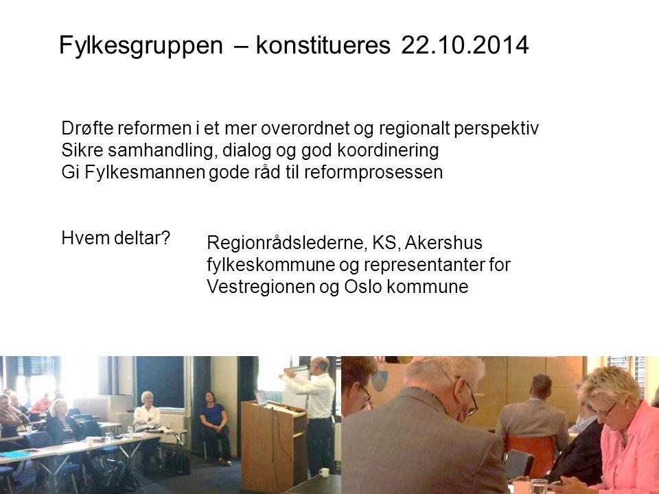 Fylkesgruppen – konstitueres 22.10.2014