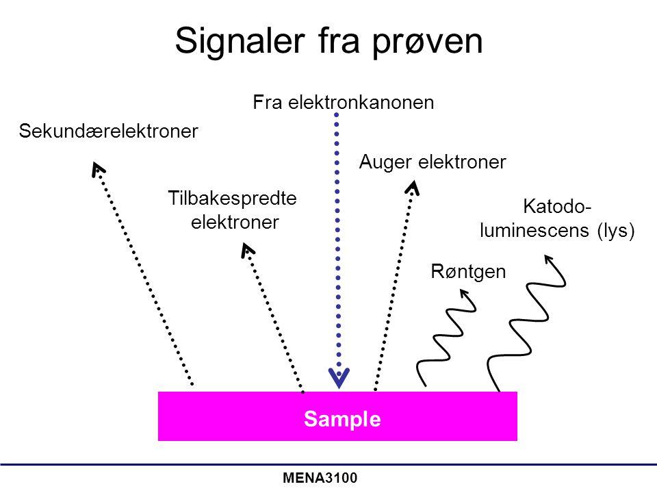 Signaler fra prøven Sample Fra elektronkanonen Sekundærelektroner