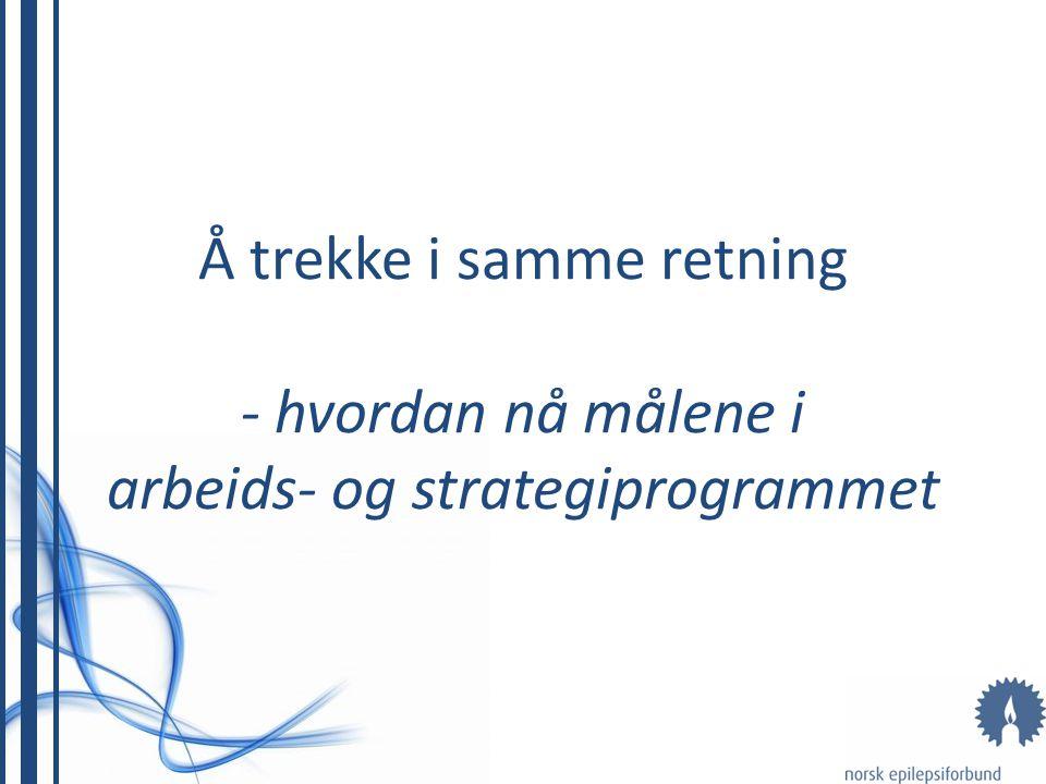 Å trekke i samme retning - hvordan nå målene i arbeids- og strategiprogrammet