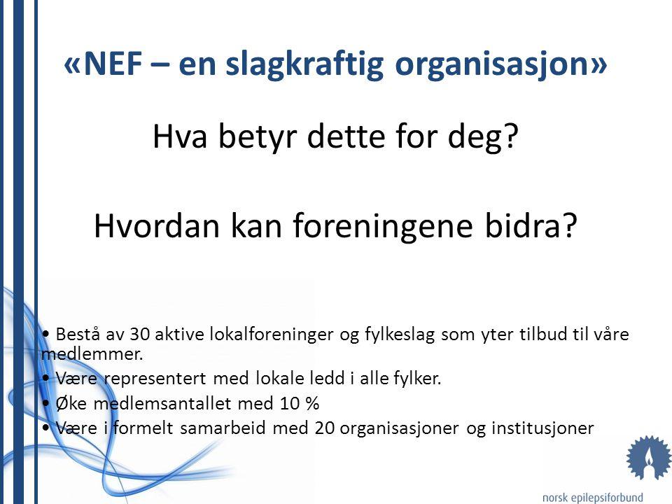 «NEF – en slagkraftig organisasjon»