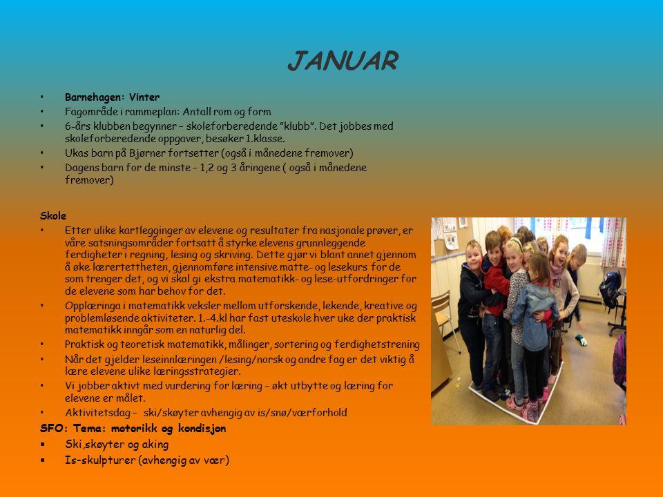 JANUAR SFO: Tema: motorikk og kondisjon Ski,skøyter og aking