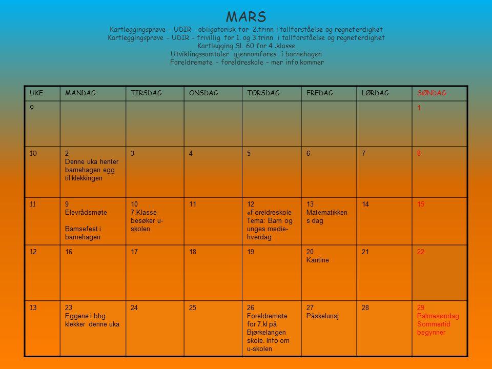 MARS Kartleggingsprøve – UDIR -obligatorisk for 2