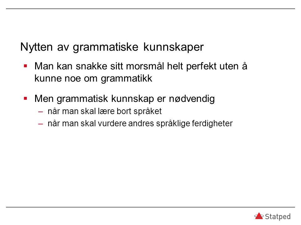 Nytten av grammatiske kunnskaper