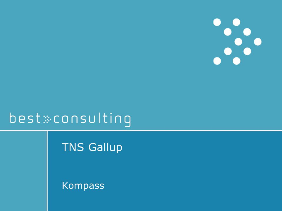 TNS Gallup Kompass