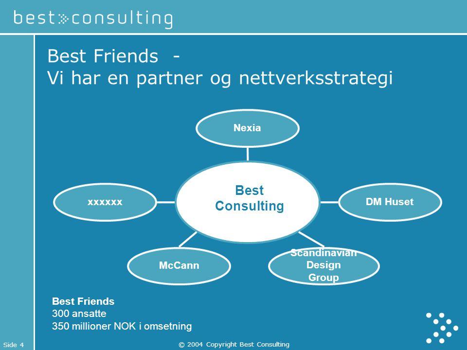 Best Friends - Vi har en partner og nettverksstrategi