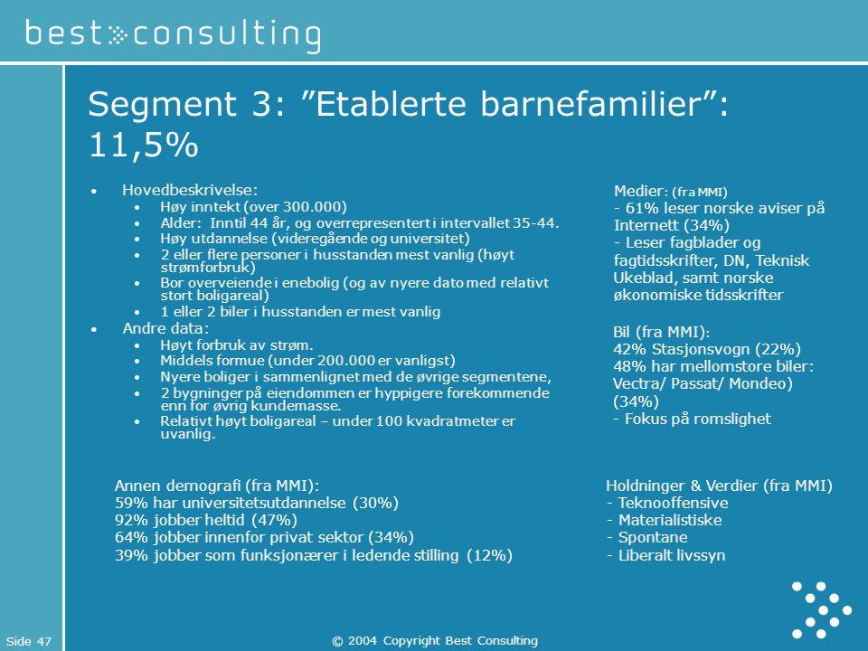 Segment 3: Etablerte barnefamilier : 11,5%