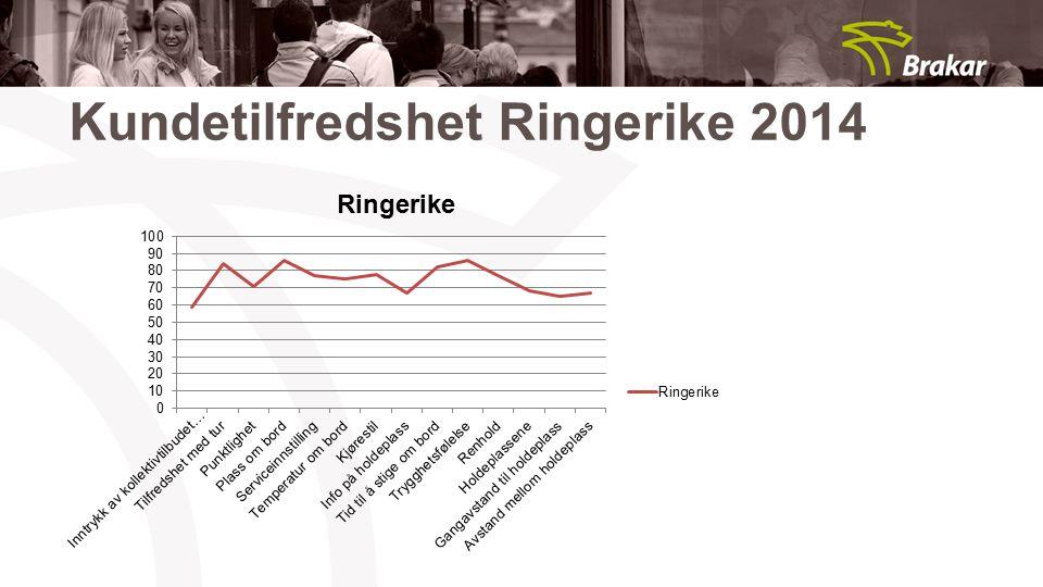 Kundetilfredshet Ringerike 2014
